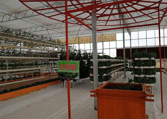 百斯明集团现代农业智能化项目